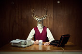 Deer CEO at His Desk