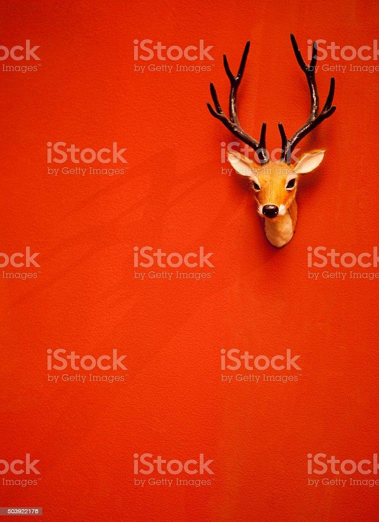 Deer head, on the wall stock photo