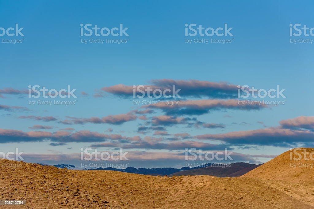 Deer on a ridge as the sun rises stock photo