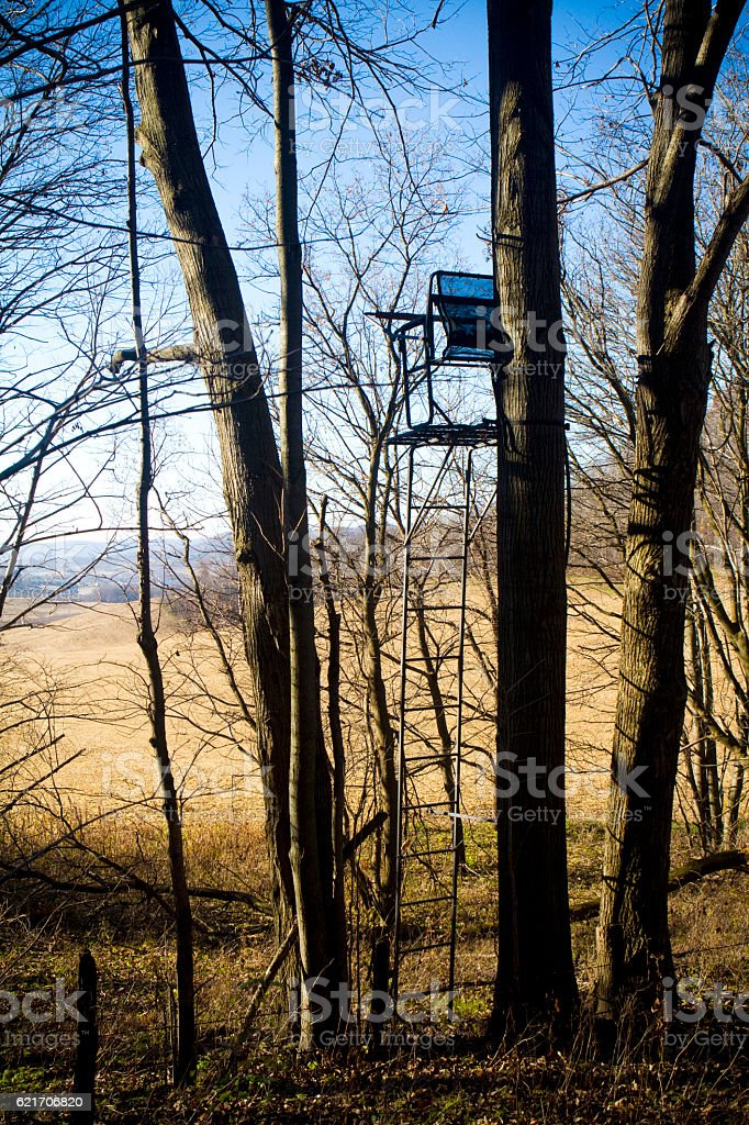 Deer Stand in the Wilderness in Buffalo County, Wisconsin stock photo