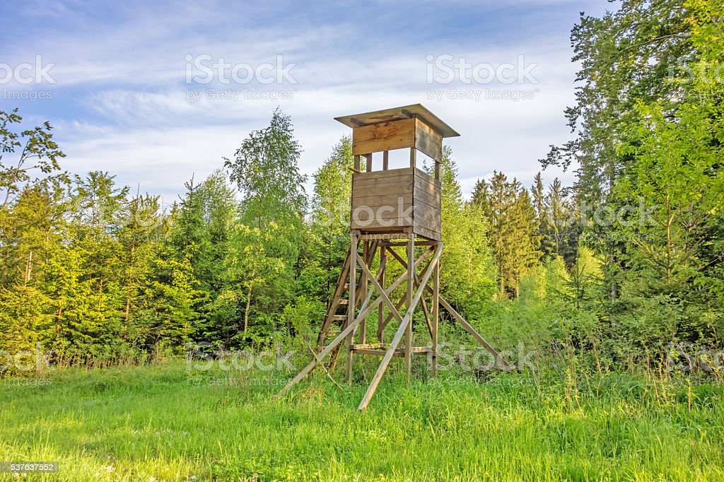 Deerstand in the forest stock photo