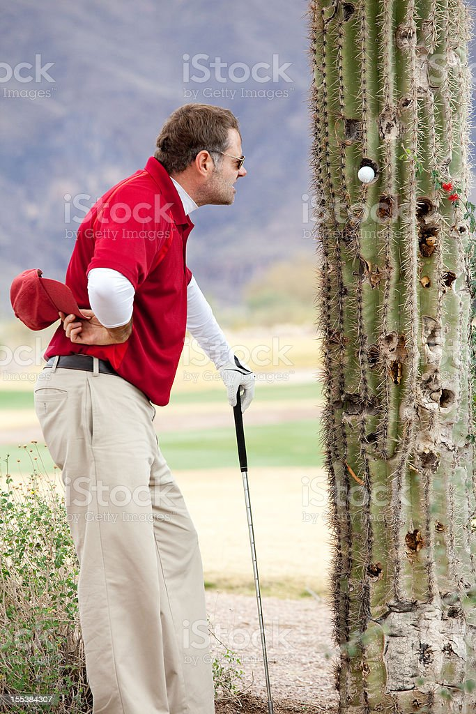 Defeated And Angry Golfer With Ball Stuck in Tree royalty-free stock photo
