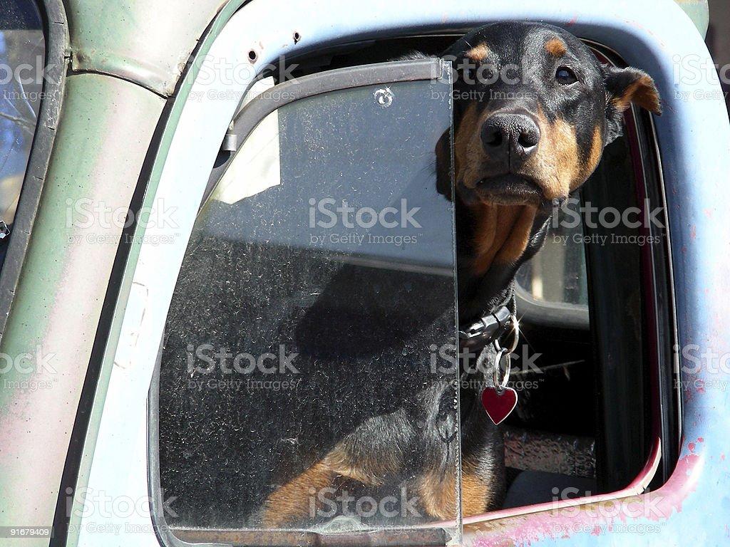 Defensive Driving stock photo
