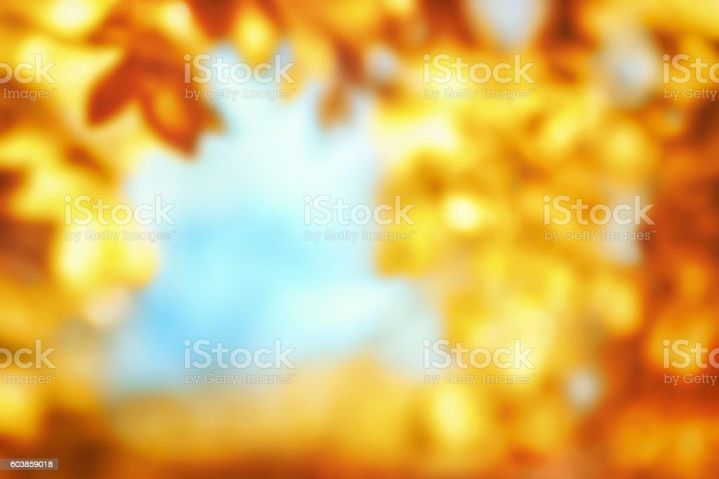 Defocused autumn background stock photo