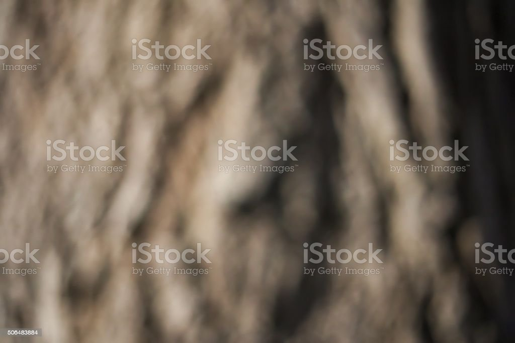 Defocused Night Shot Of A Poplar Stem stock photo
