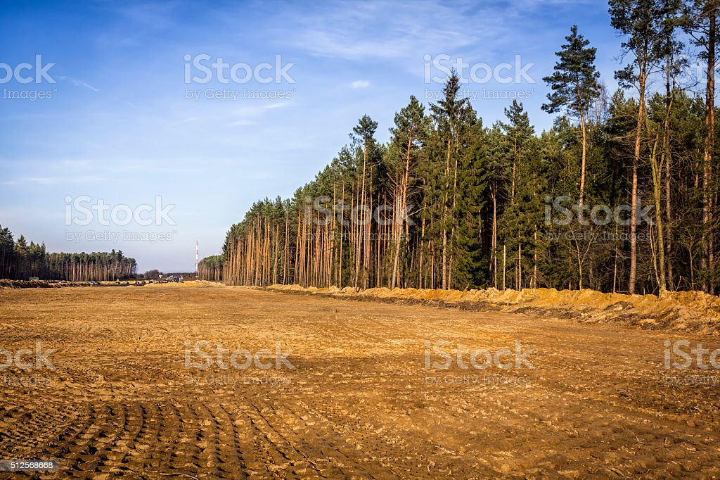 Deforestation in Poland stock photo