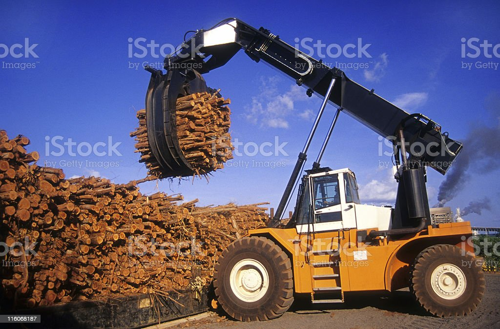 Deforestation in the Amazon royalty-free stock photo
