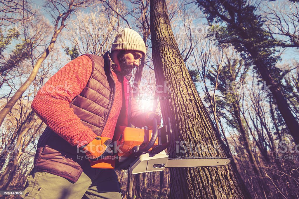 Deforestation  - lumberjack cutting tree, wood processing industry stock photo