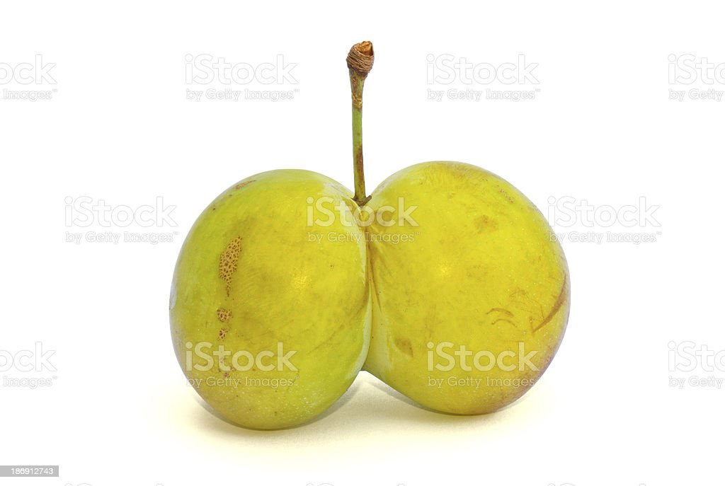 Deformed plum stock photo