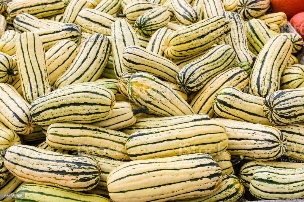 Delicata squash at the market stock photo