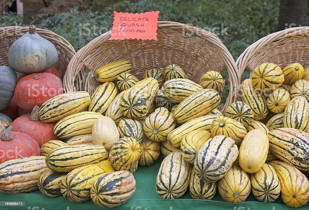 delicata squash stock photo