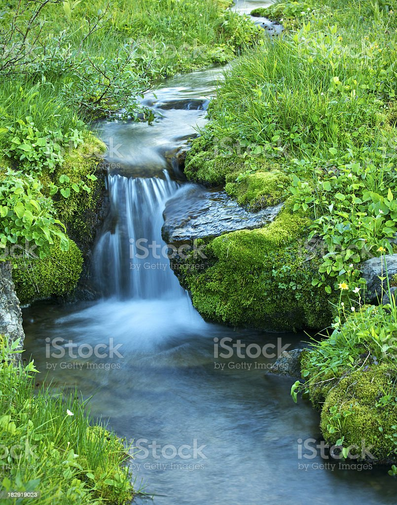 delicate alpine stream royalty-free stock photo