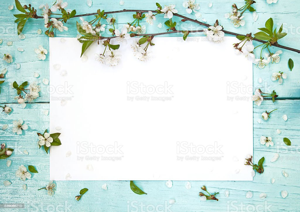 Delicate frame with flowers of cherry stock photo