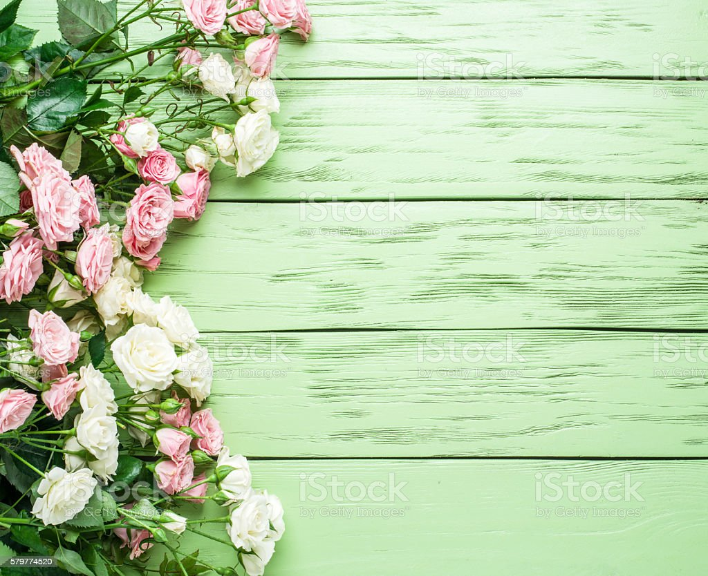 Delicate fresh roses on the green wooden background. stock photo