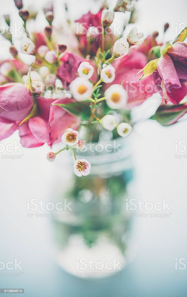 Delicate fresh waxflowers and roses in vase on blue background stock photo