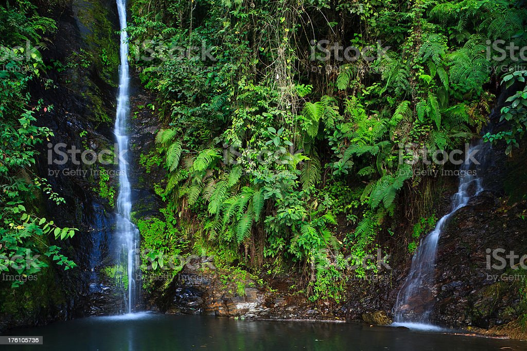 Delicate Jungle Waterfalls and Pool stock photo