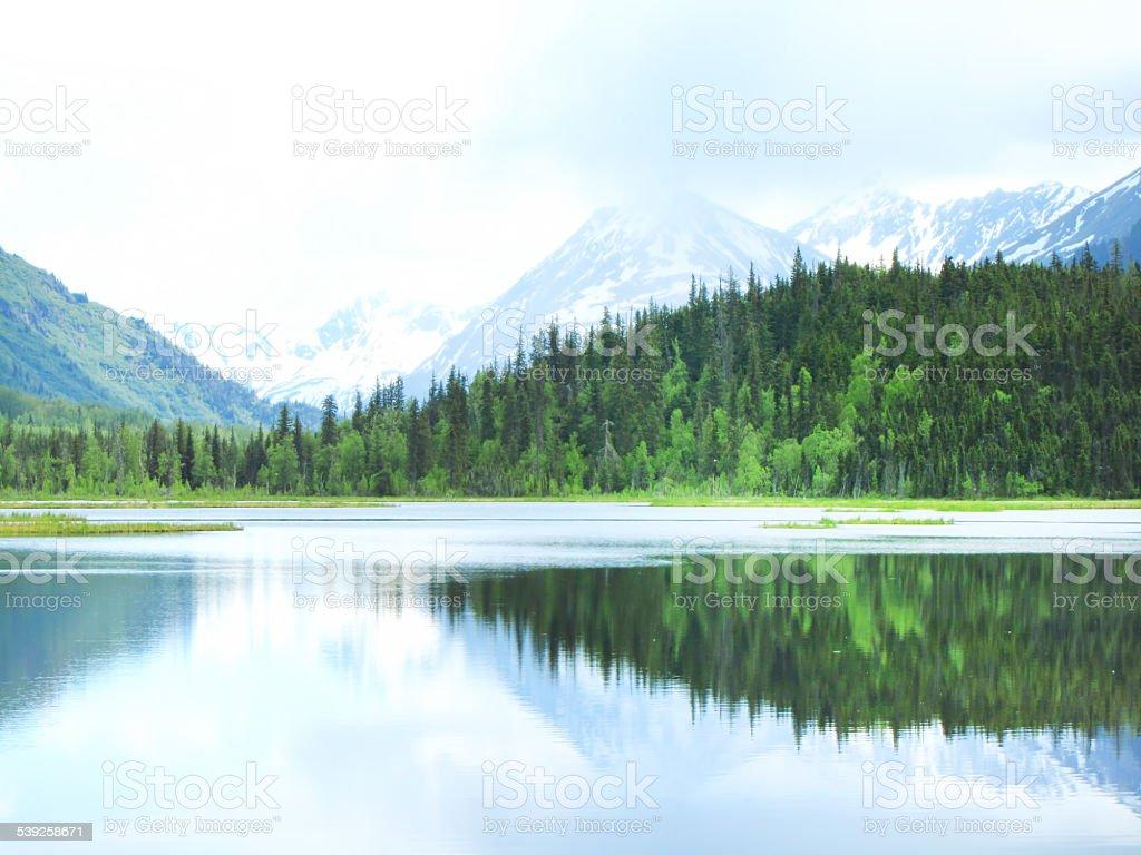 Delicate Morning Landscape stock photo