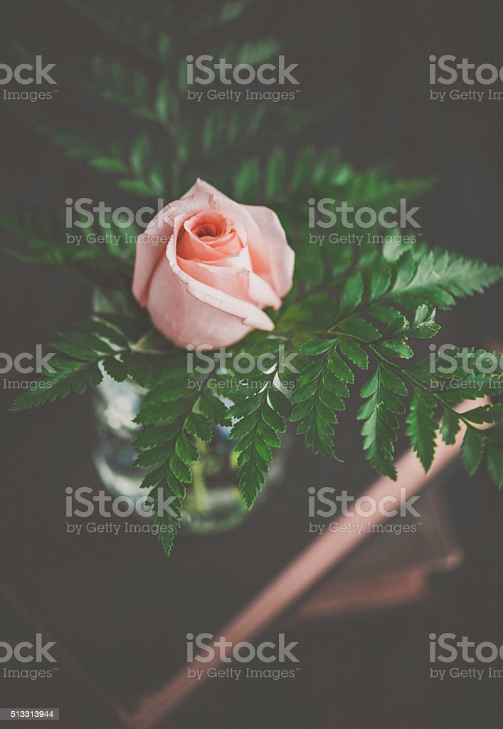 Delicate rose bouquet with ferns on antique books stock photo