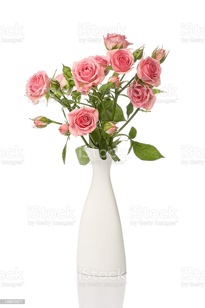 Delicate roses in a vase royalty-free stock photo