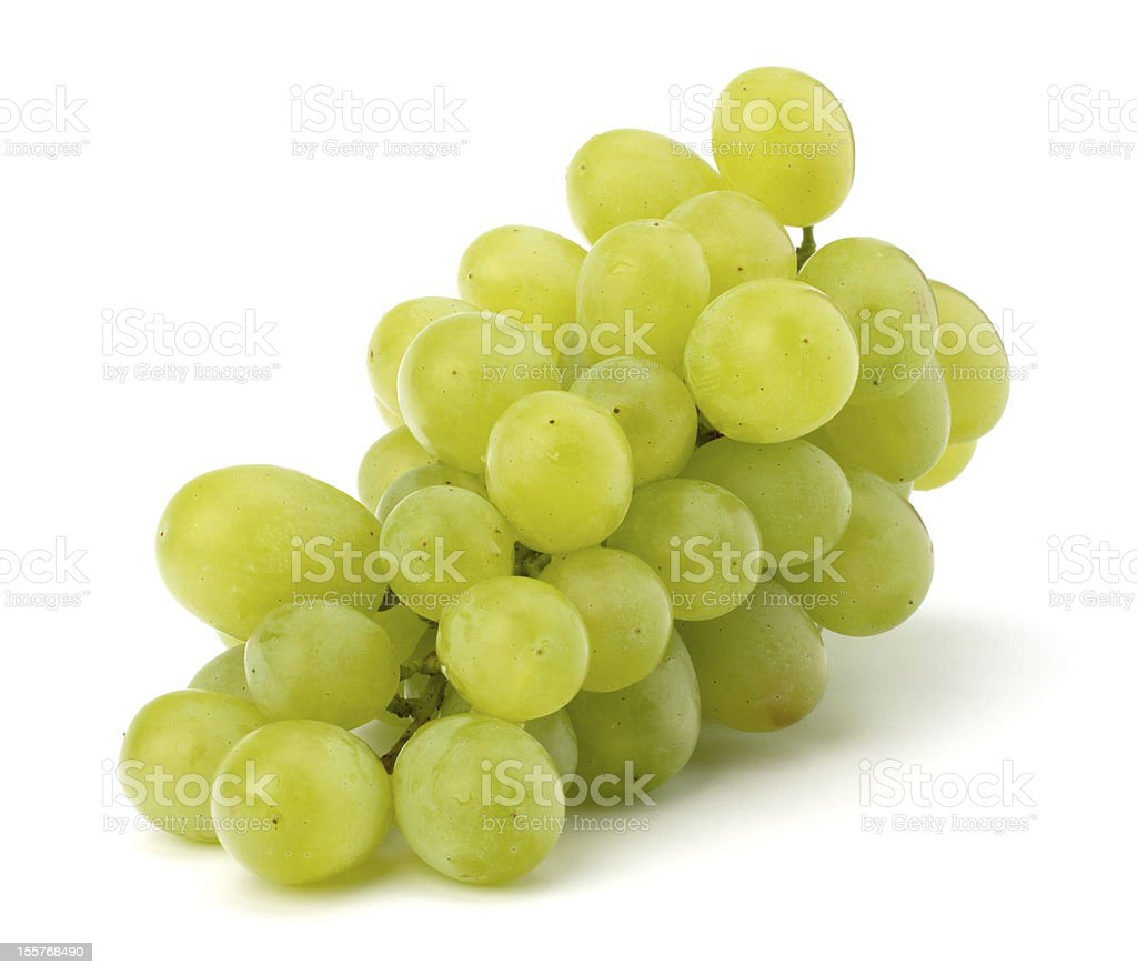 Delicious and healthy green grapes right off the vine stock photo