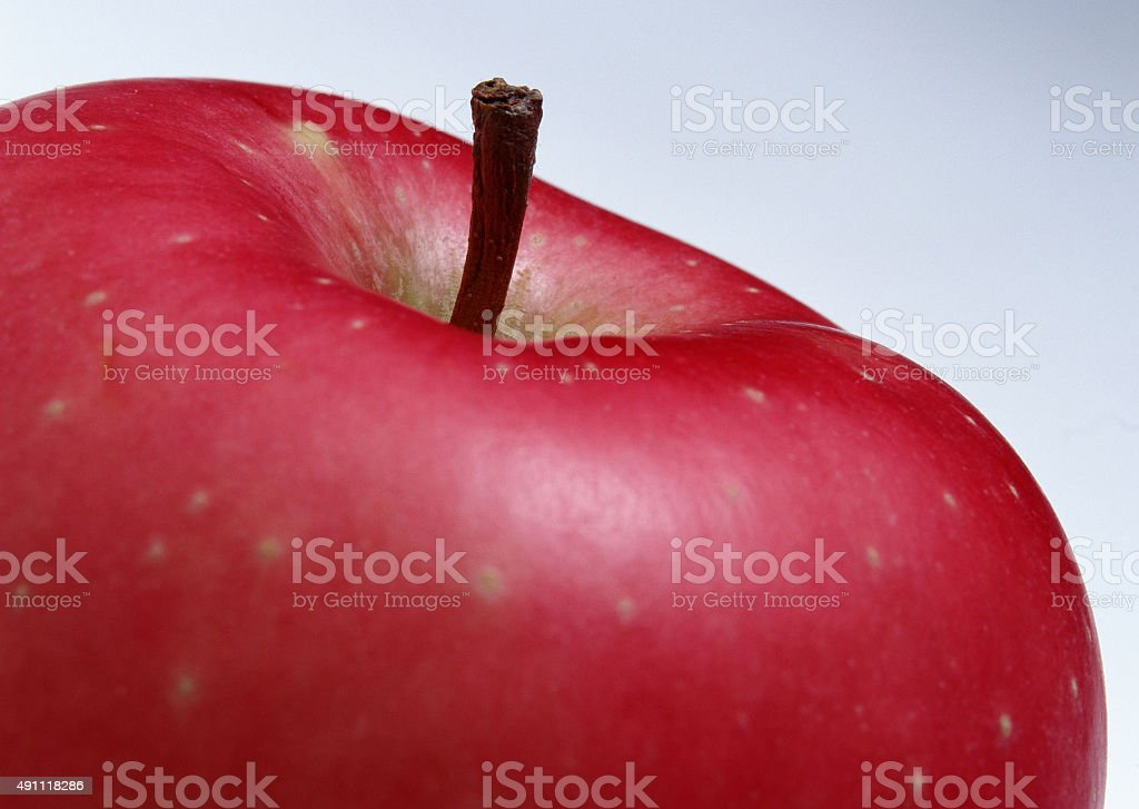 Delicious apple stock photo