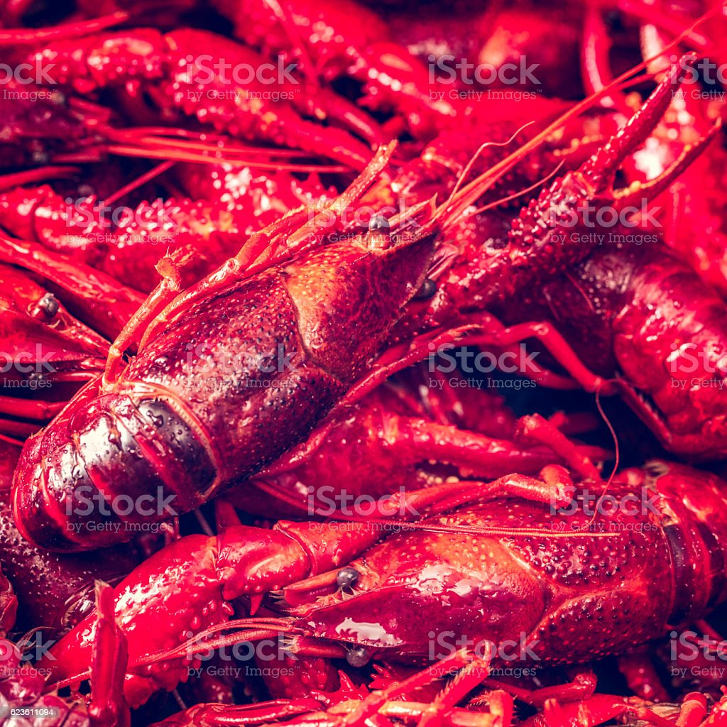 Delicious Boiled Red Crayfish stock photo