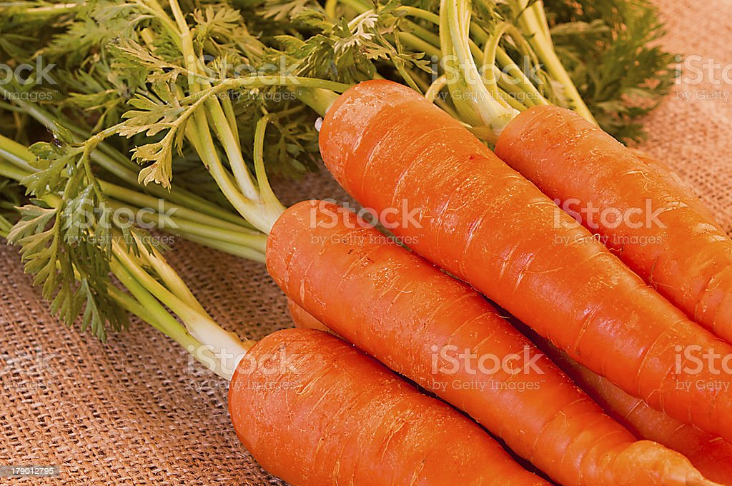 Delicious bunch of fresh carrots royalty-free stock photo
