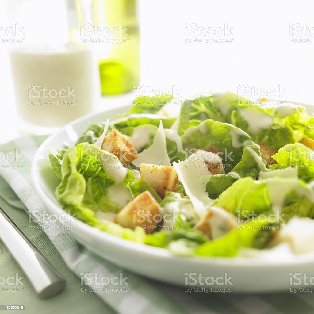 delicious ceasar salad stock photo