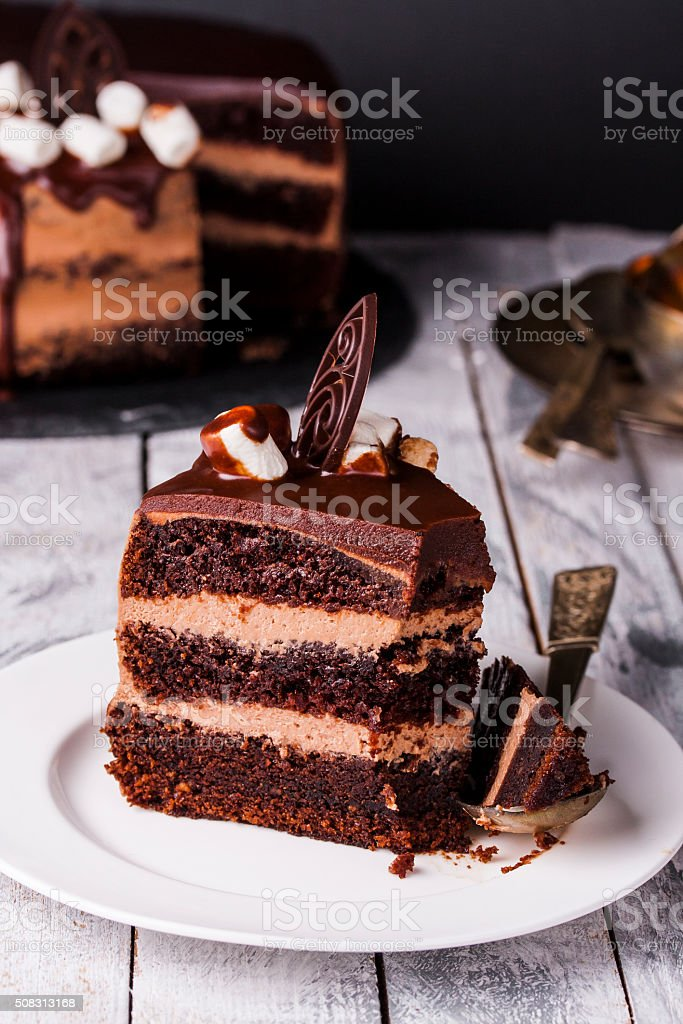 Delicious chocolate cake in white plate on wooden table background stock photo