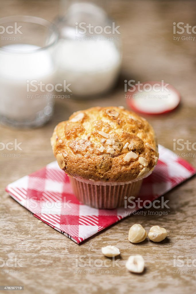 Delicious cupcake with chocolate chips stock photo
