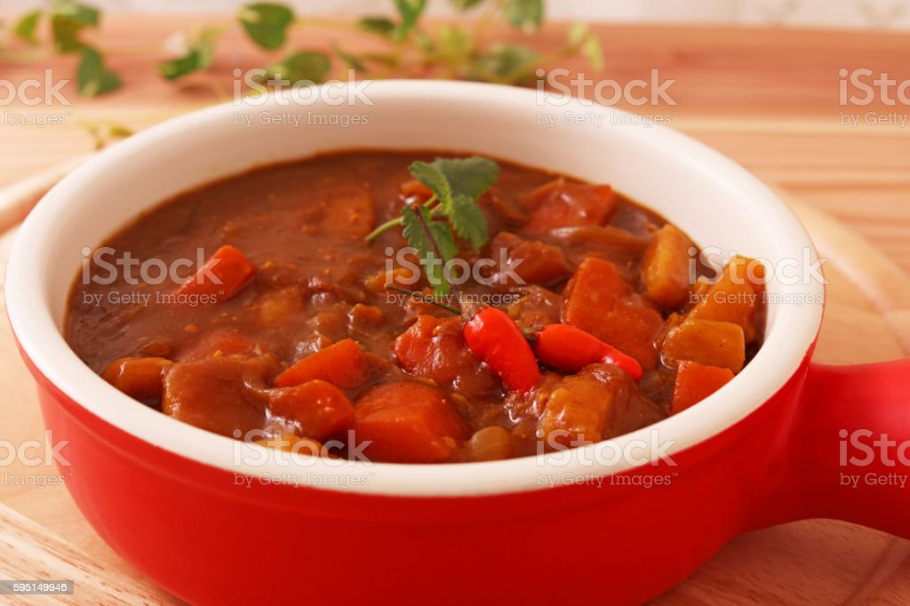 Delicious curry stock photo