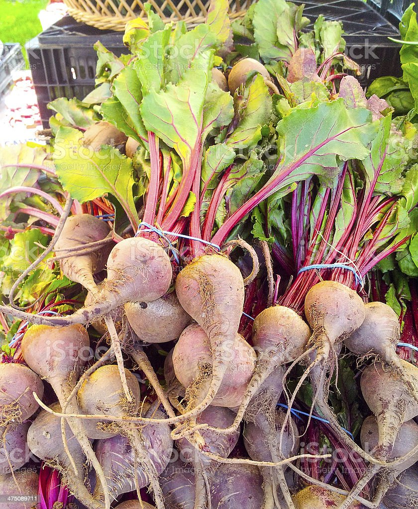 Delicious farm fresh Red beets on a farmers market. royalty-free stock photo