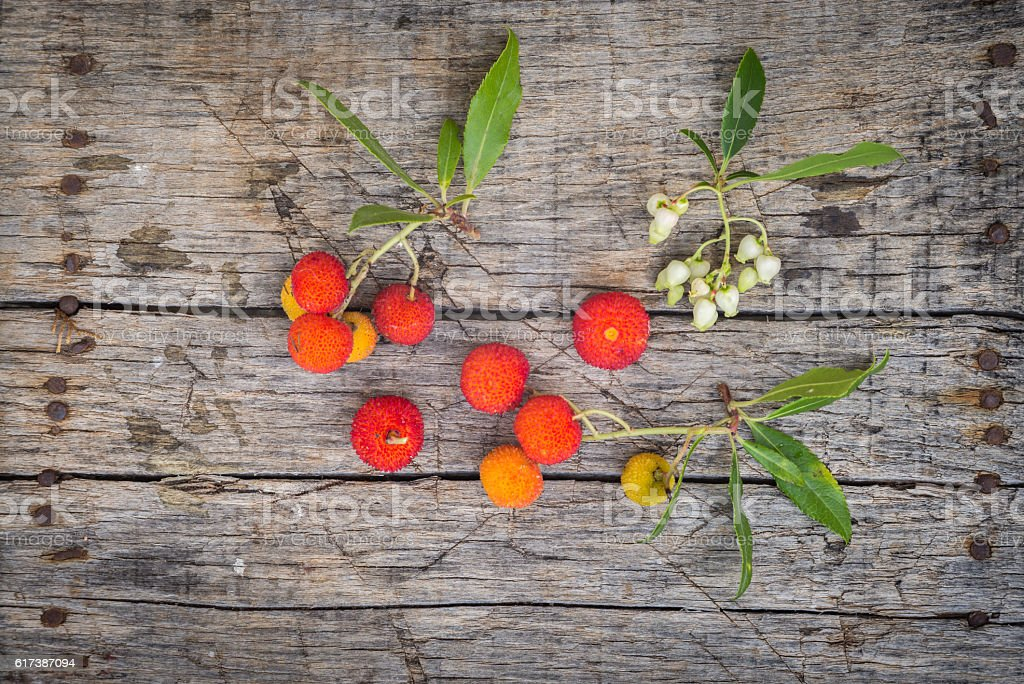 Delicious fresh arbutus fruits stock photo