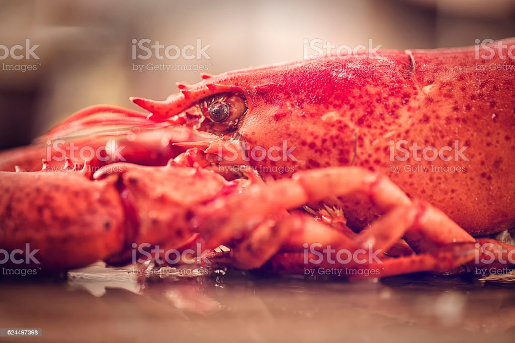 Delicious Fresh Cooked Lobster stock photo