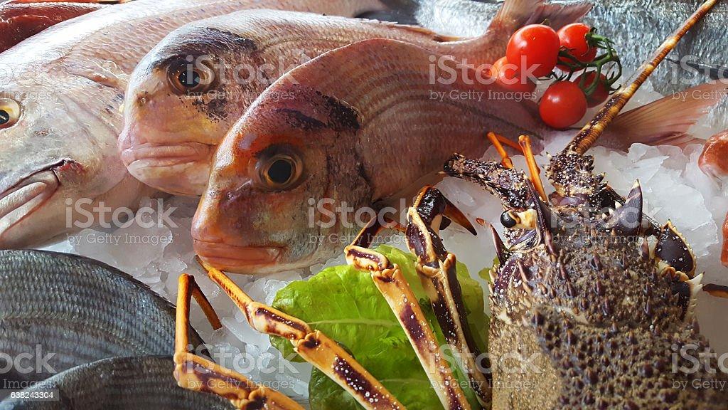 delicious fresh fish on ice - Lobster, porgy, dentex stock photo