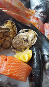 delicious fresh fish on ice -  porgy, bream, oyster, salmon