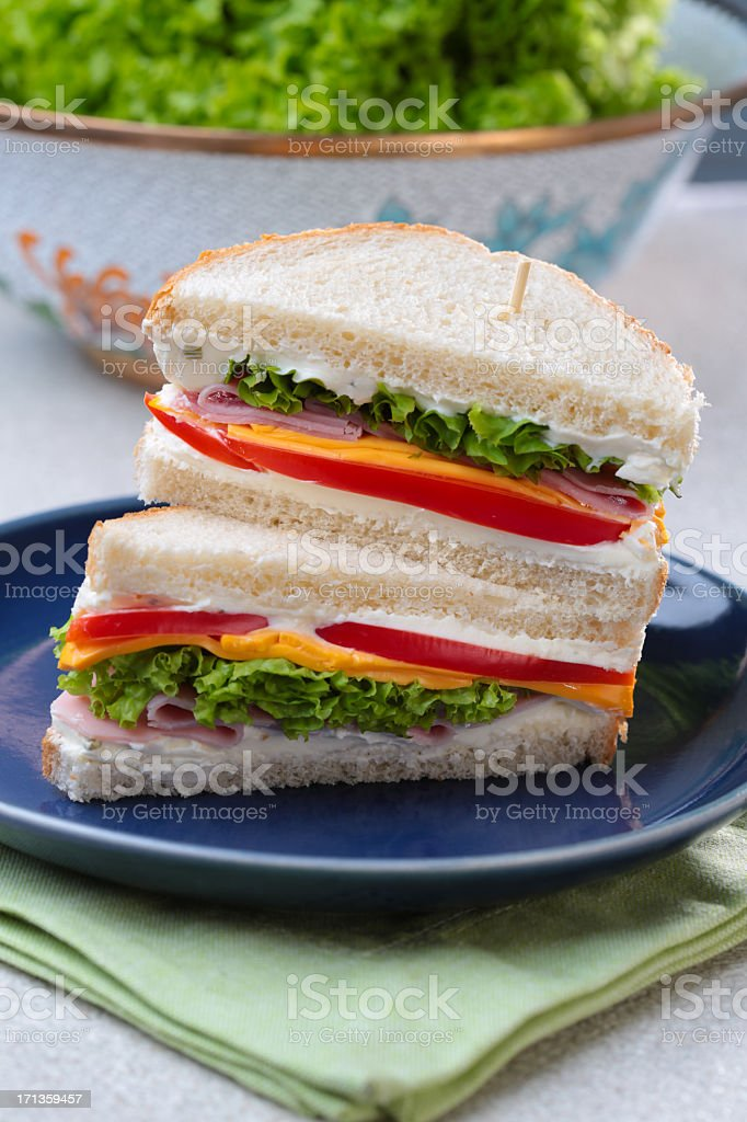 Delicious sandwich royalty-free stock photo