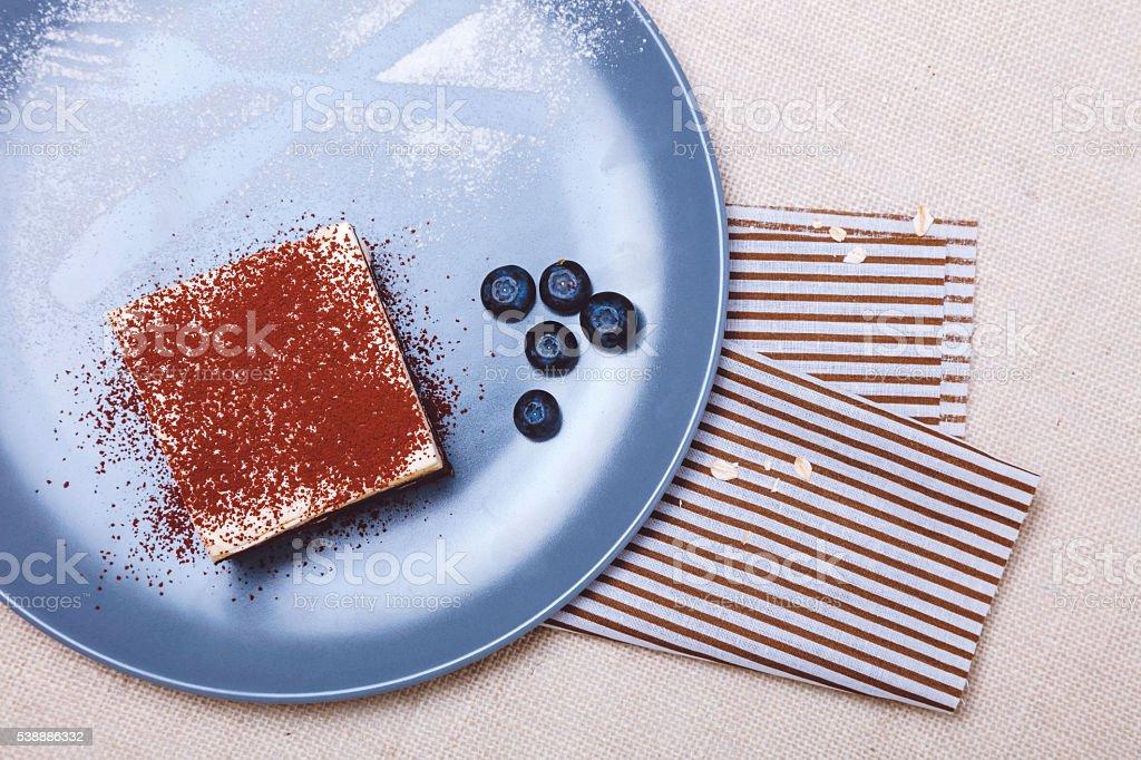 Delicious Tiramisu stock photo