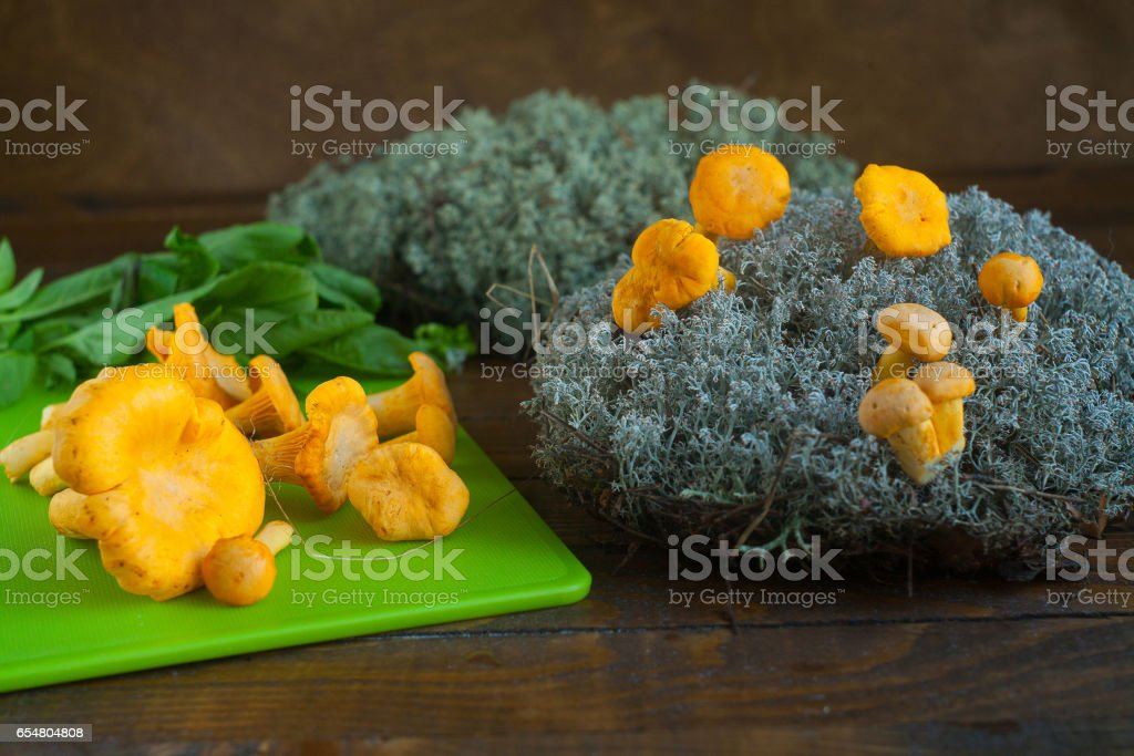 Delicious wild mushrooms chanterelle on table stock photo