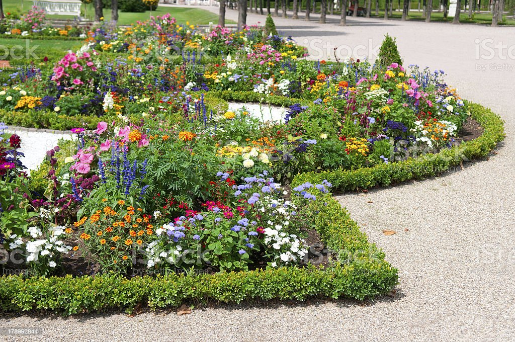 delightful flower bed royalty-free stock photo