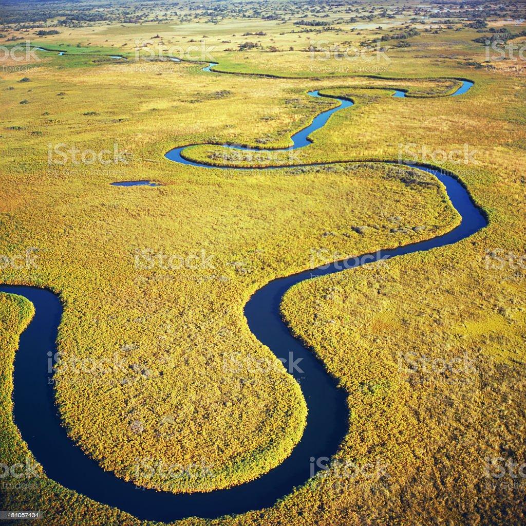 delta Okavango stock photo