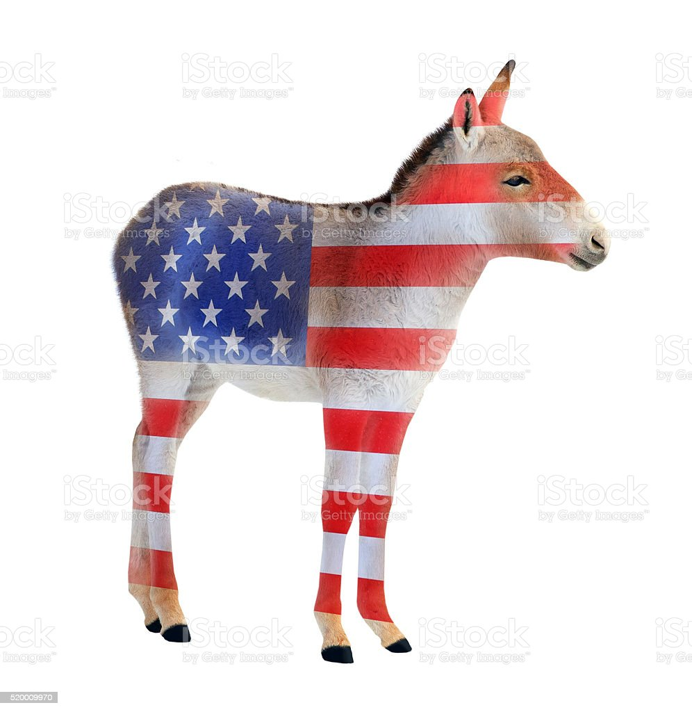 Democrat donkey. stock photo