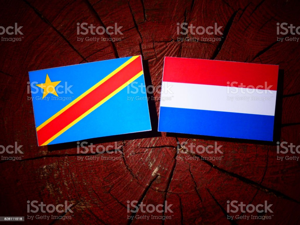 Democratic Republic of the Congo flag with Dutch flag on a tree stump isolated stock photo