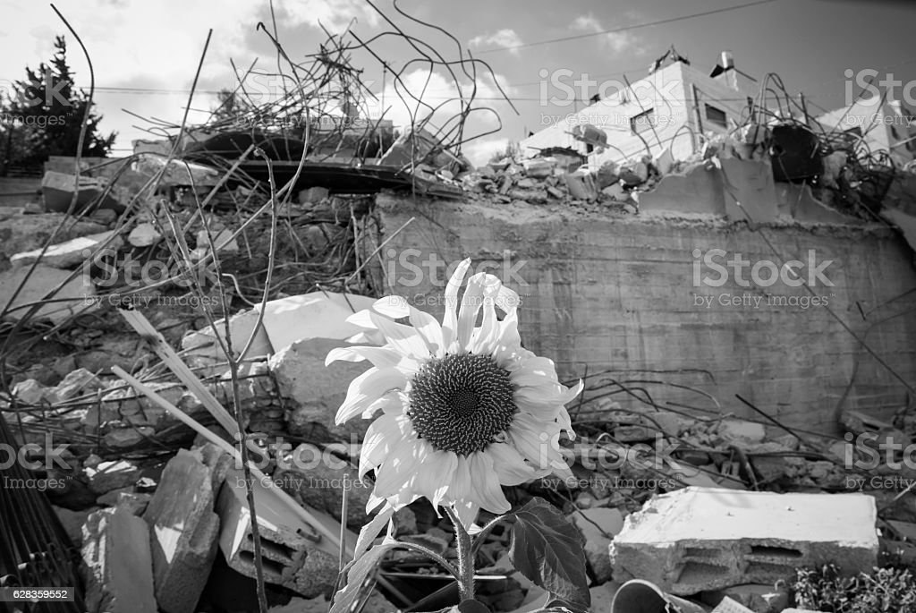 Demolished home in Issawiya on outskirts of Jerusalem stock photo