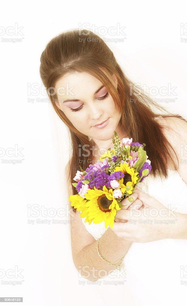 Demure Bride stock photo