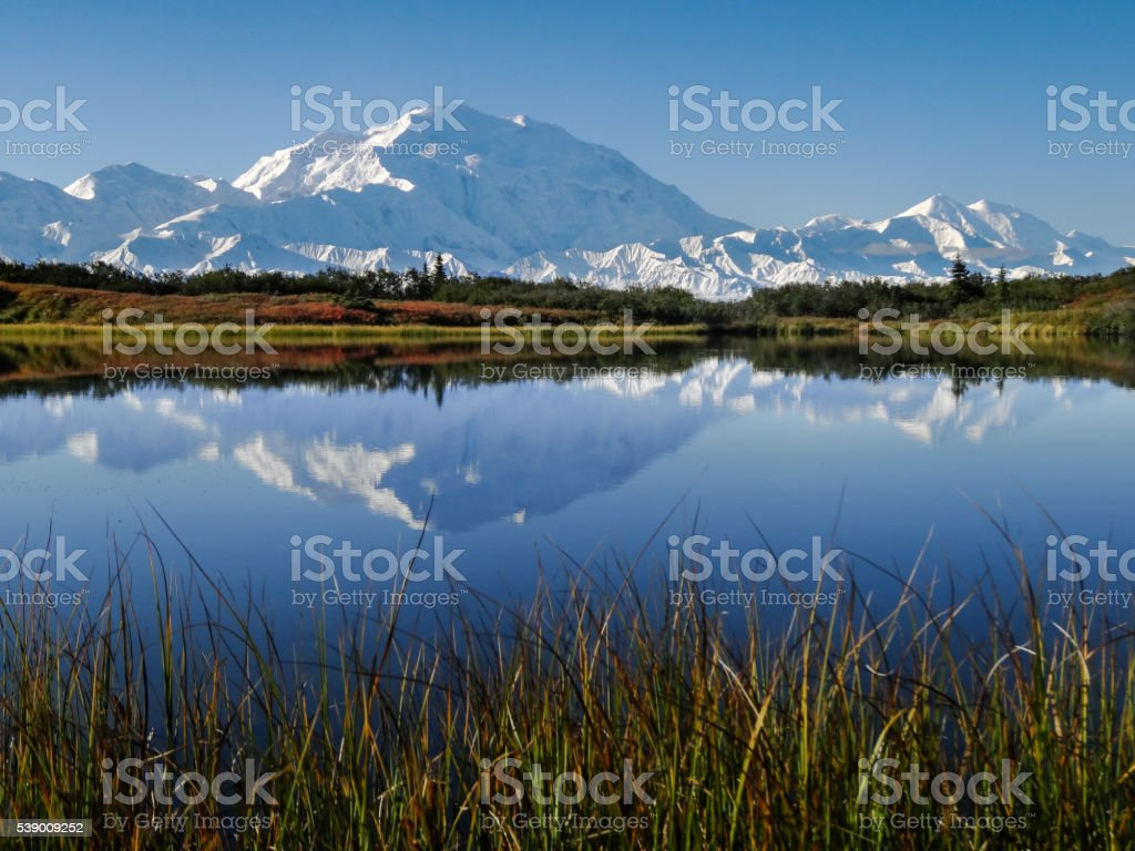 Denali (Mount McKinley) in Reflection Pond during Autumn stock photo
