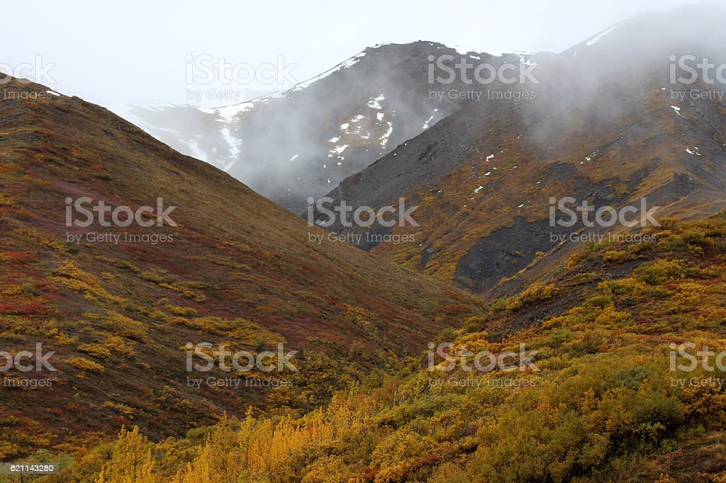 Denali Nationalpark im Herbst stock photo