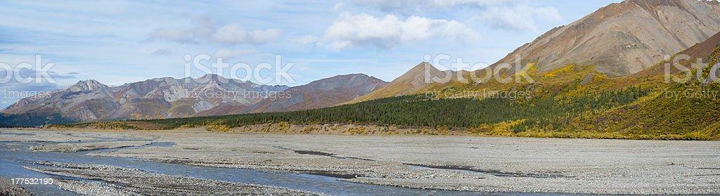 Denali National Park Panorama royalty-free stock photo