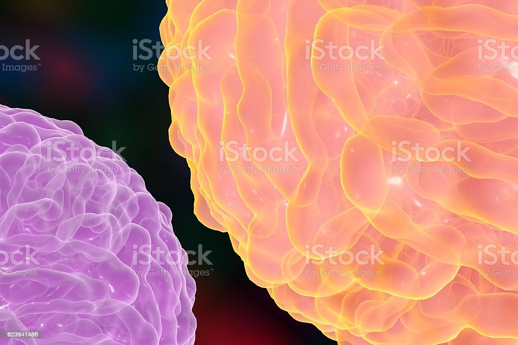 Dengue virus which causes yellow fever vector art illustration