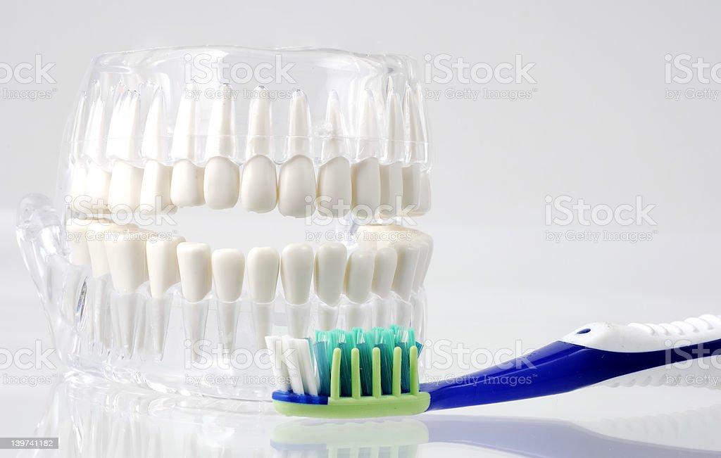 Dental Hygiene royalty-free stock photo